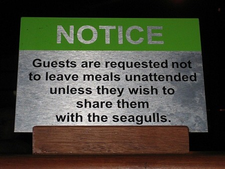 """""""Guests are requested not to leave meals unattended unless they wish to share them with the seagulls"""""""